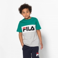 Fila Kids Classic Day Blocked Tee shady-glade grün